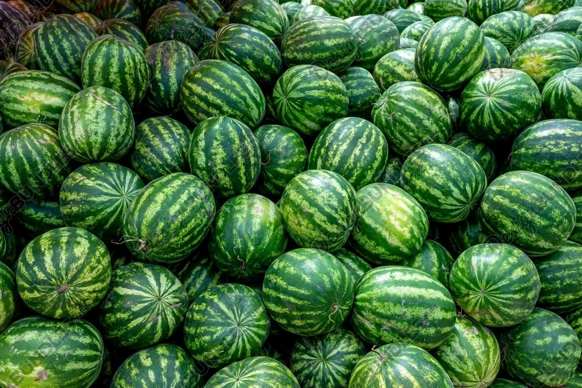 Stock Photo - Full Frame Shot Of Watermelons example image 1