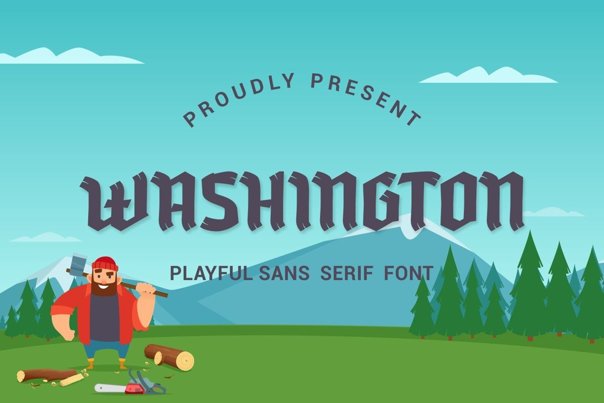 Washington - Playful Sans Serif Font example image 1