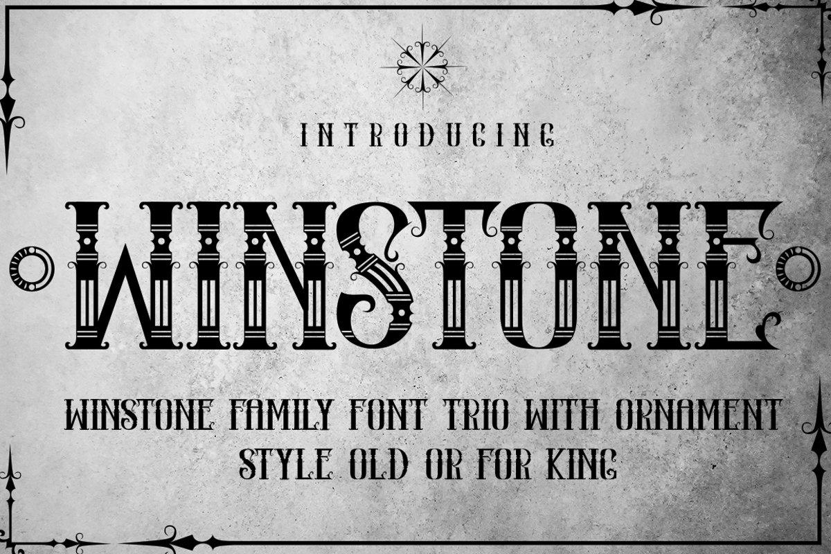 WINSTONE example image 1