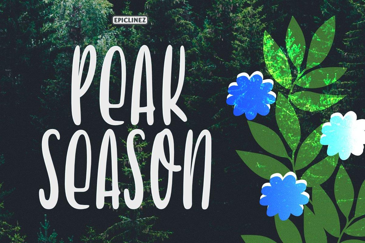 Peak Season - Display Font example image 1