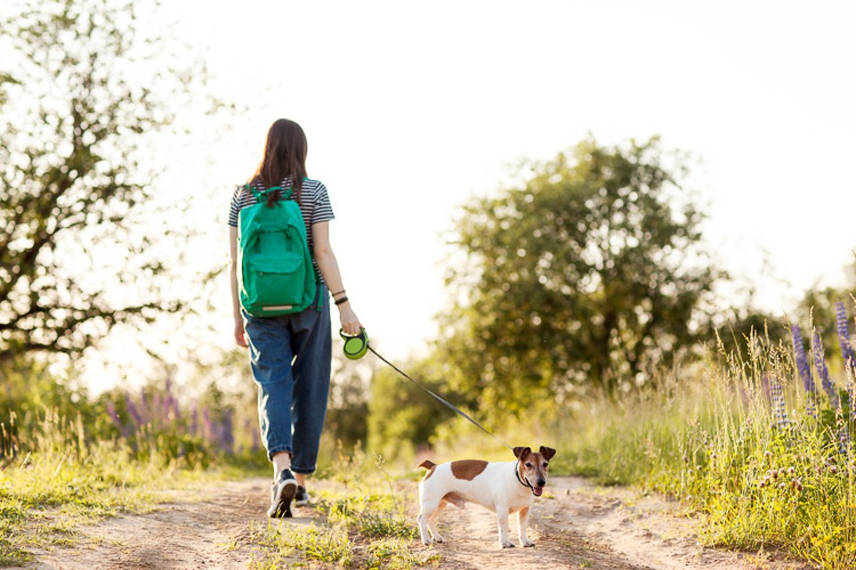 A girl walks with her dog on a country road. example image 1