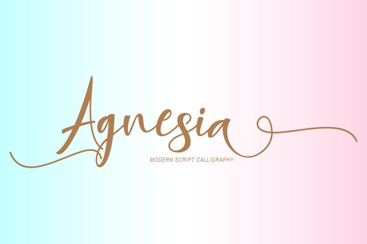 Agnesia Script example image 1