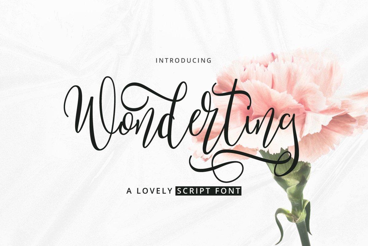 Wonderting Script example image 1