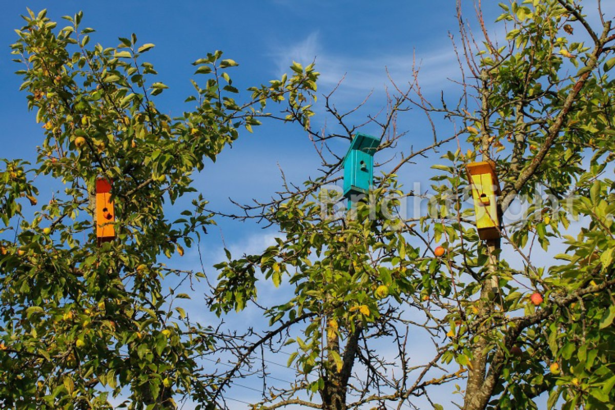 Colorful wooden birdhouses example image 1