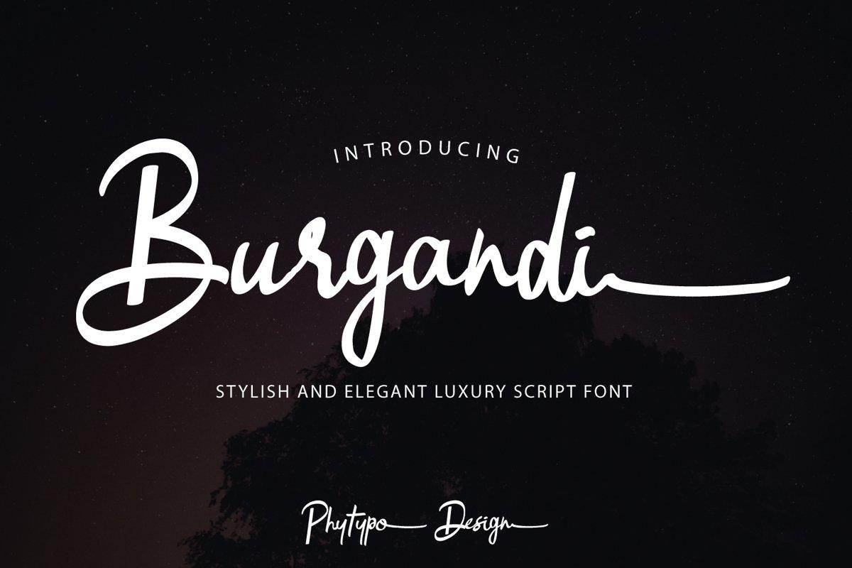 Burgandi Font example image 1
