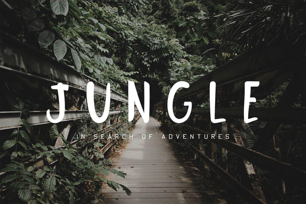 Jungle Display Font example image 1