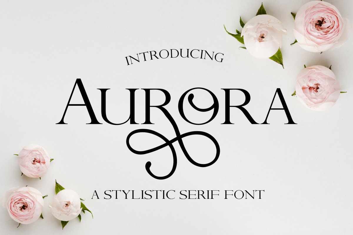 Aurora - A Stylistic serif font example image 1