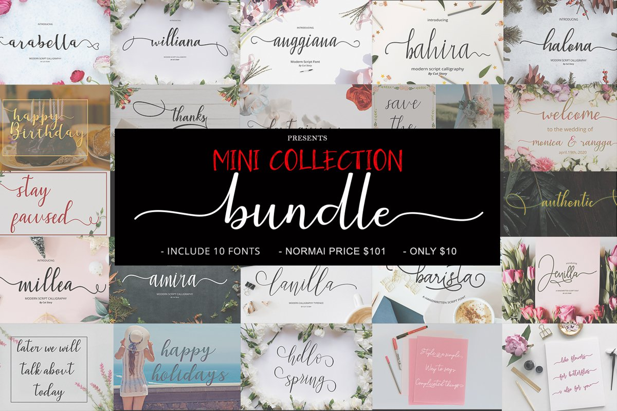 The MINI COLLECTION Bundle example image 1