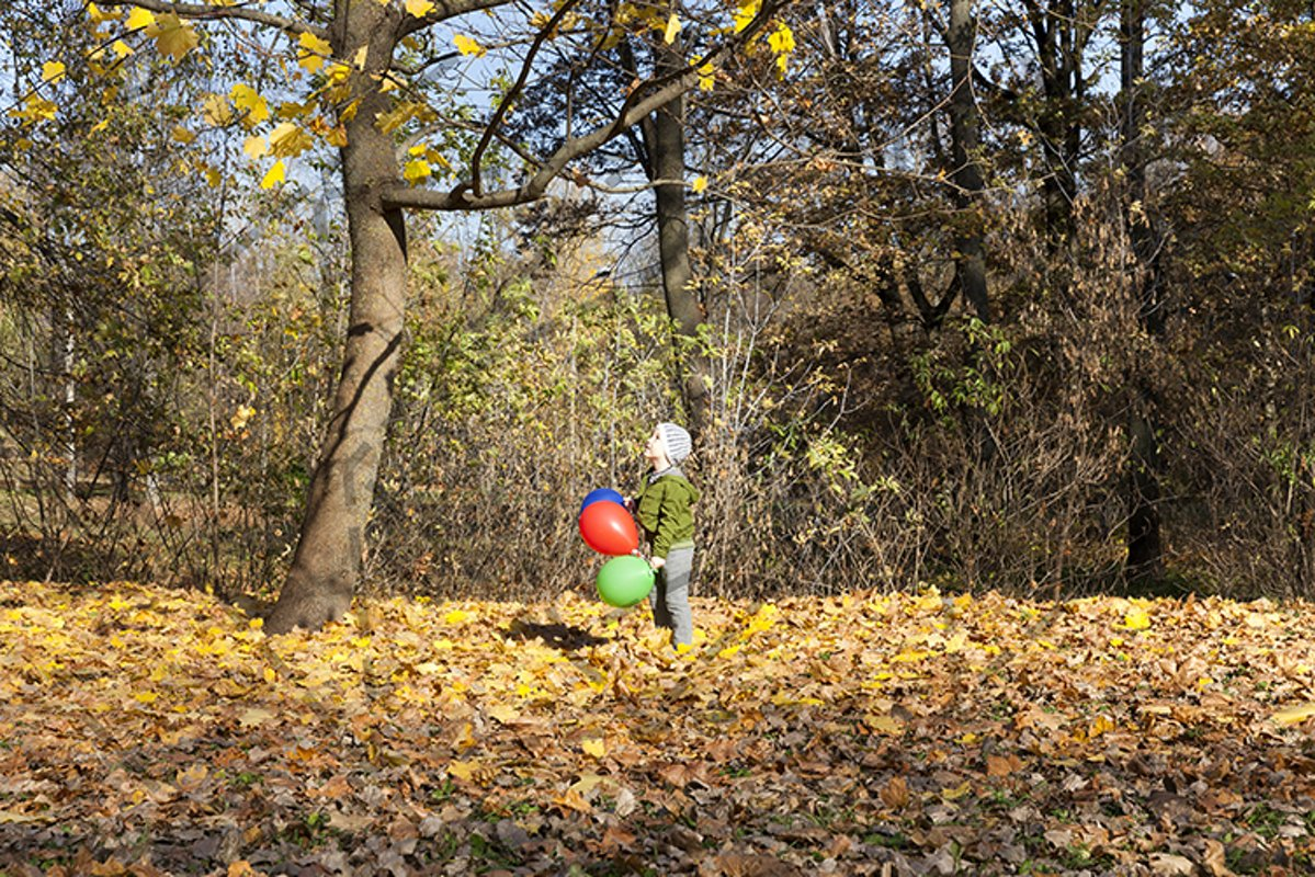 The boy in the park helium balloon example image 1