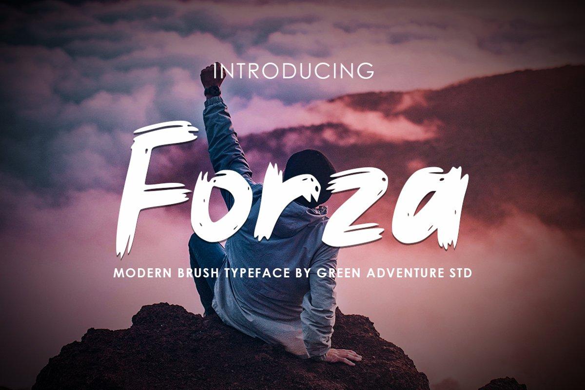 Forza - Brush Typeface Font example image 1