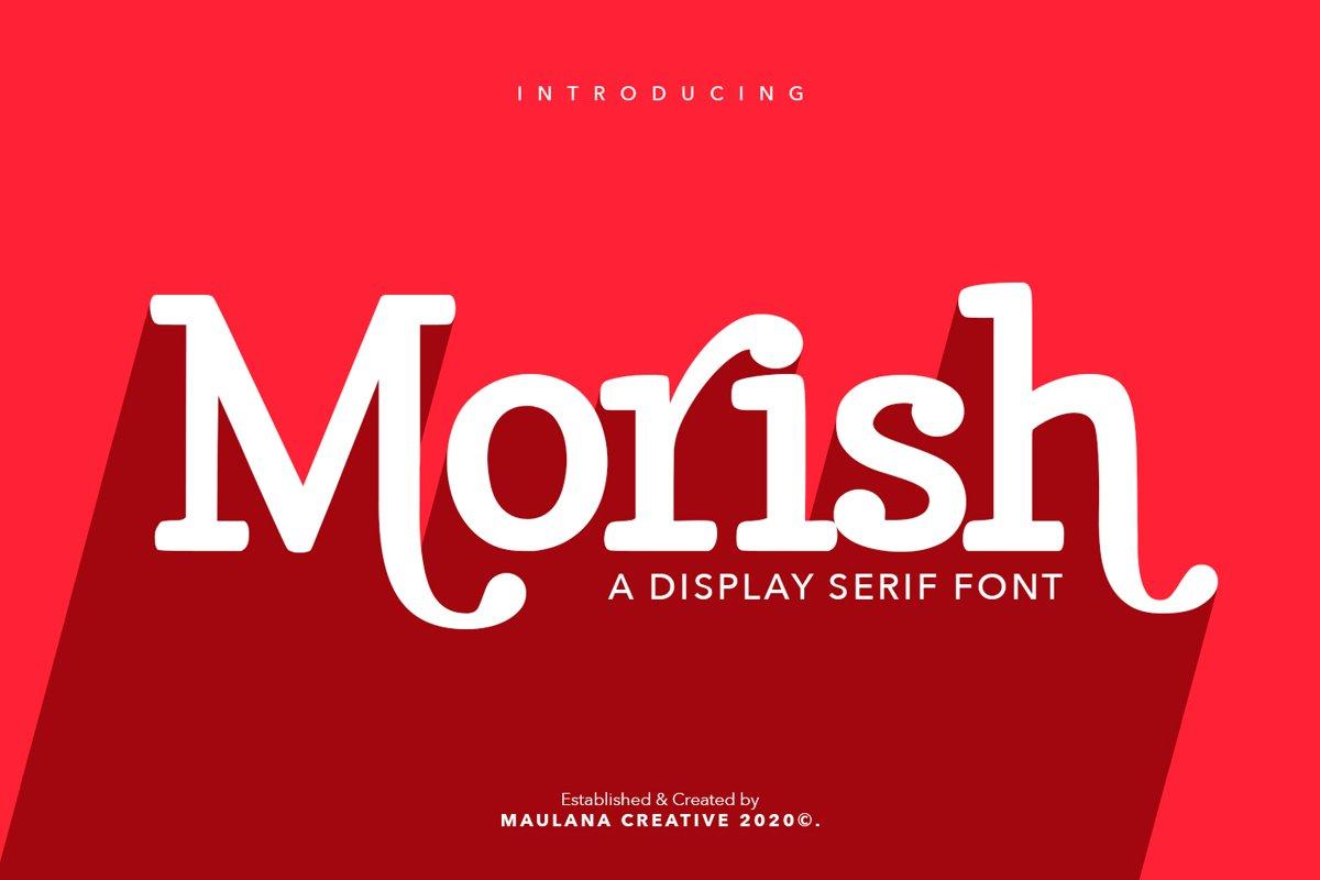 Morish Display Serif Handmade Font Ligature Type example image 1