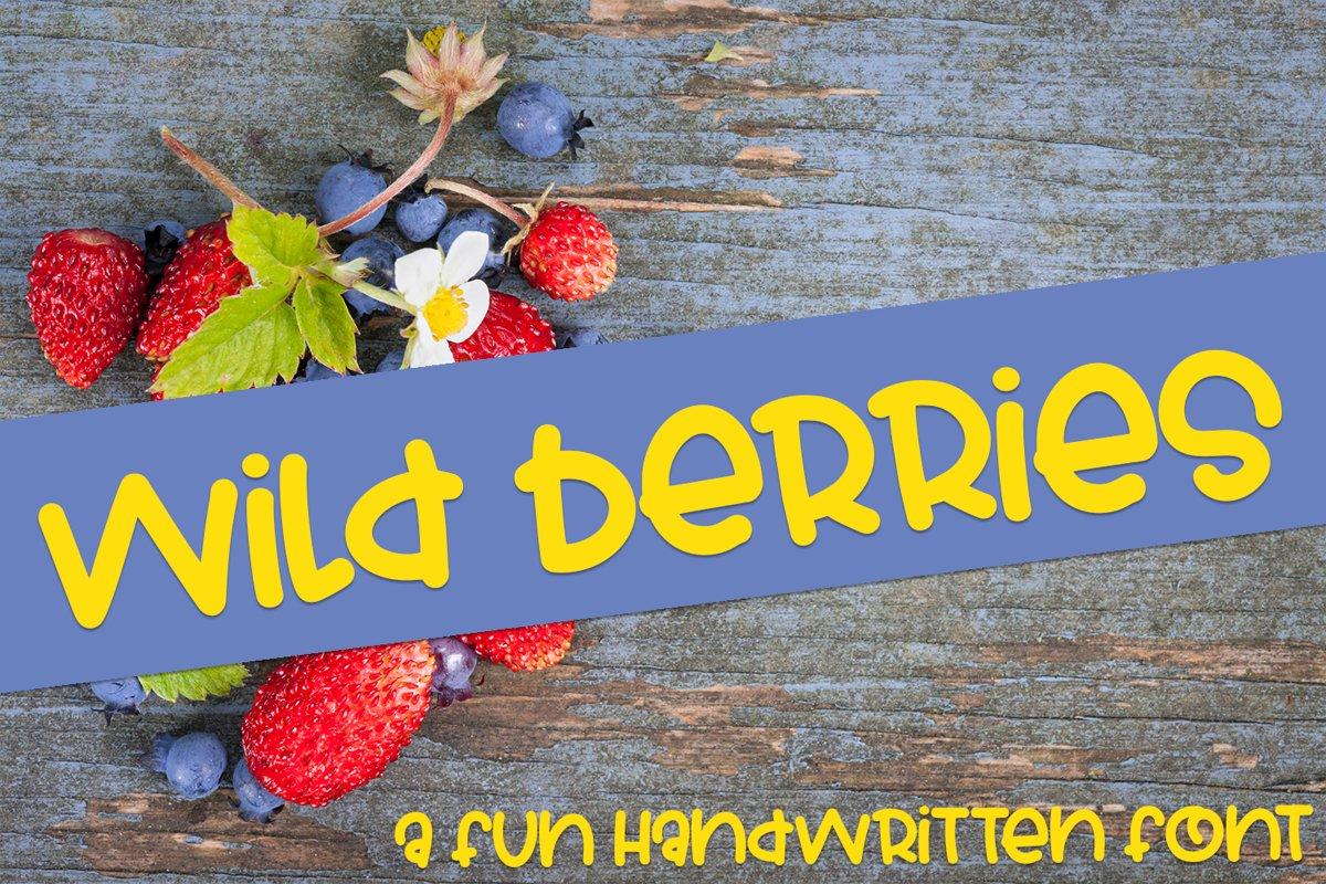 Wild Berries - A Fun Hand-Written Font example image 1