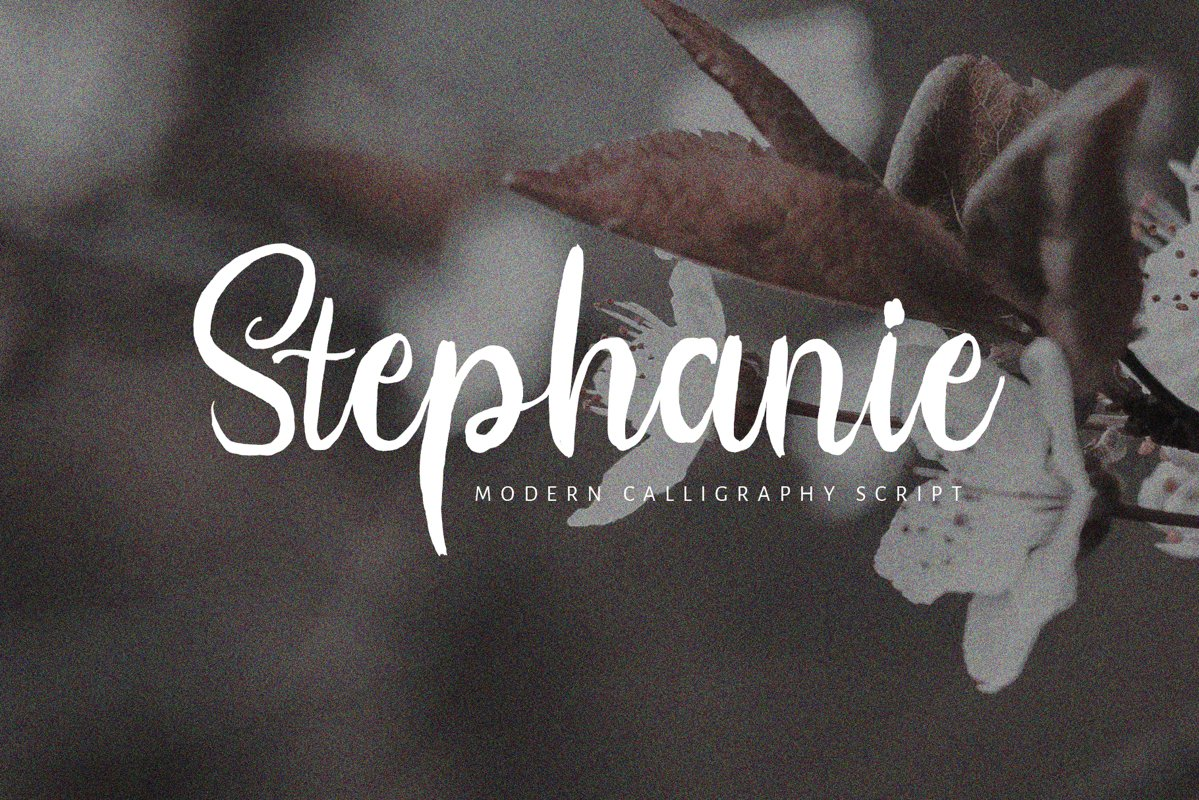 Stephanie Script Font example image 1