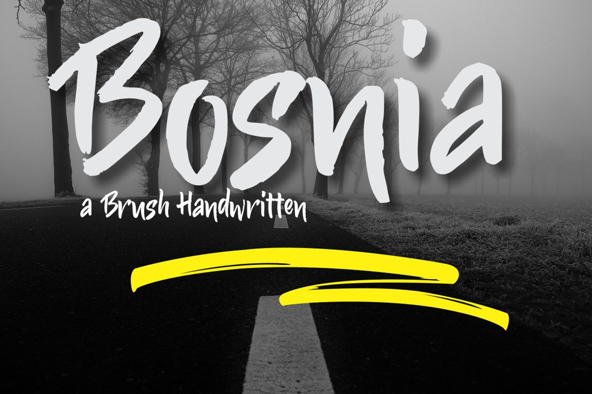 Bosnia example image 1