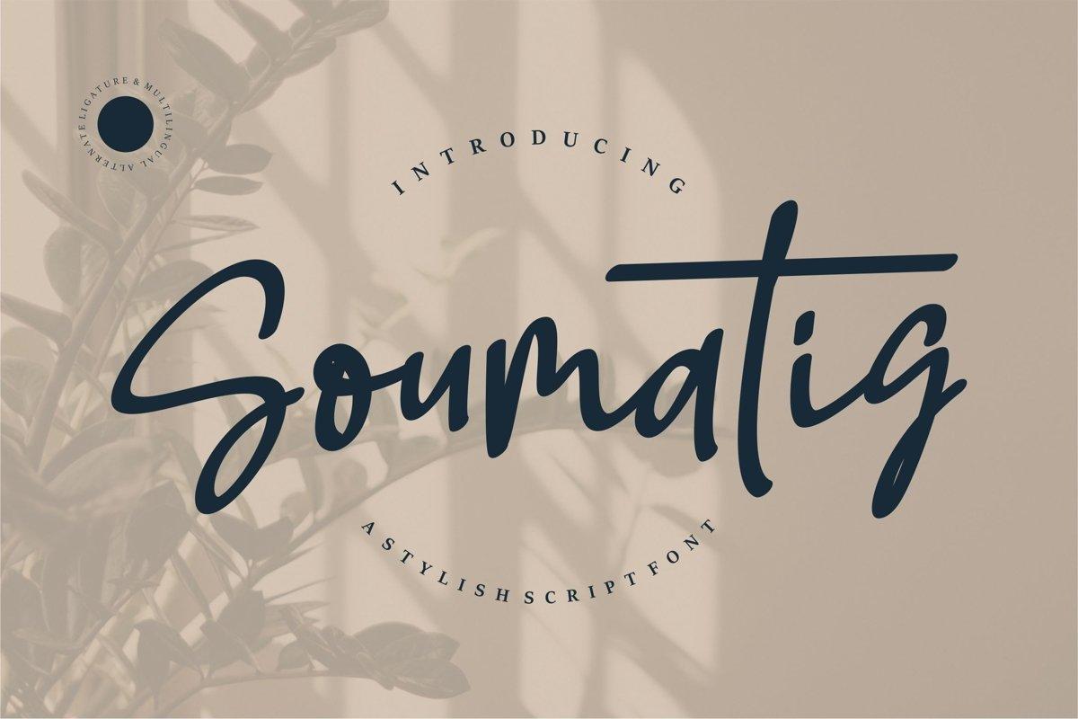 Soumatis - A Stylish Script Font example image 1