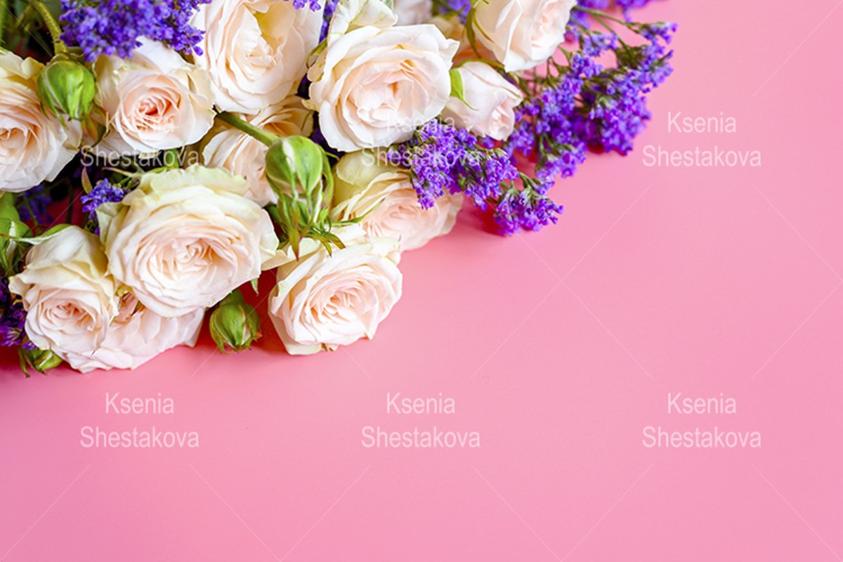 roses and purple flowers in full bloom on a pink background example image 1