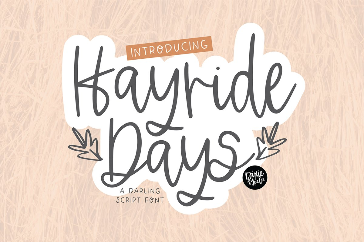 HAYRIDE DAYS a Handwriting Script Font example image 1