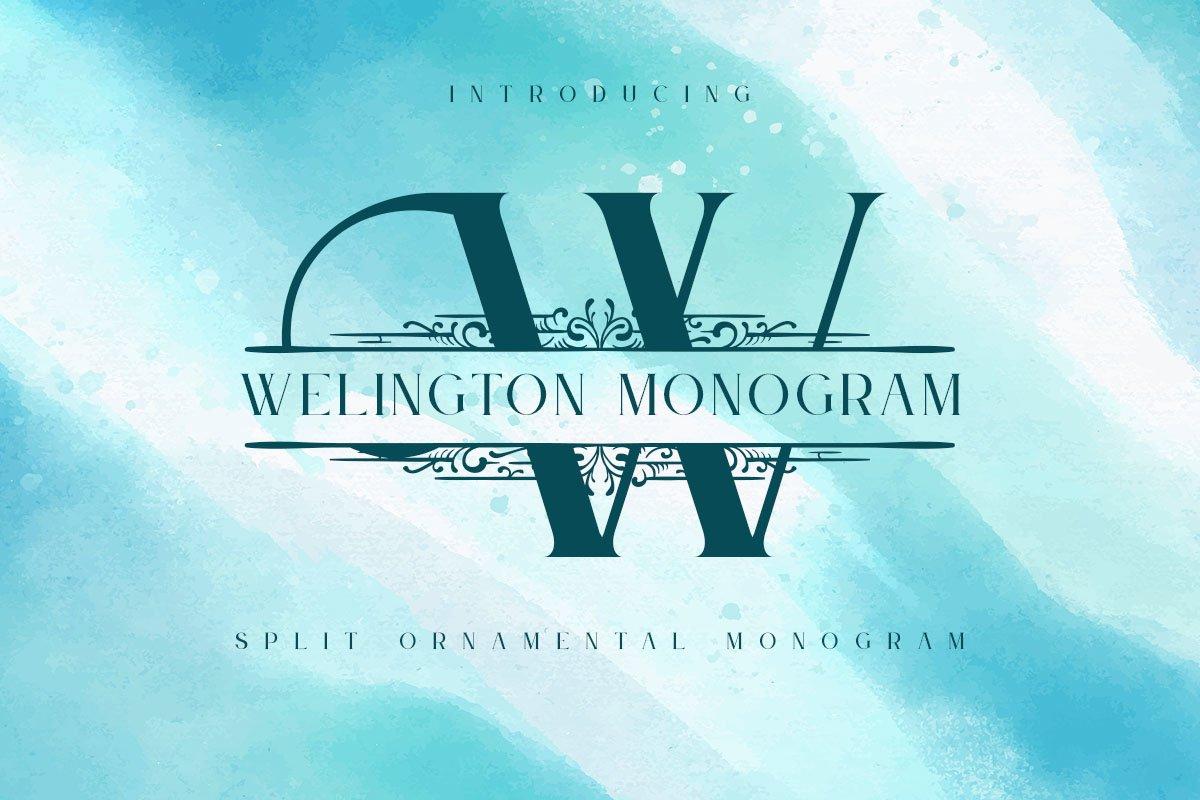 Welington Monogram Font example image 1