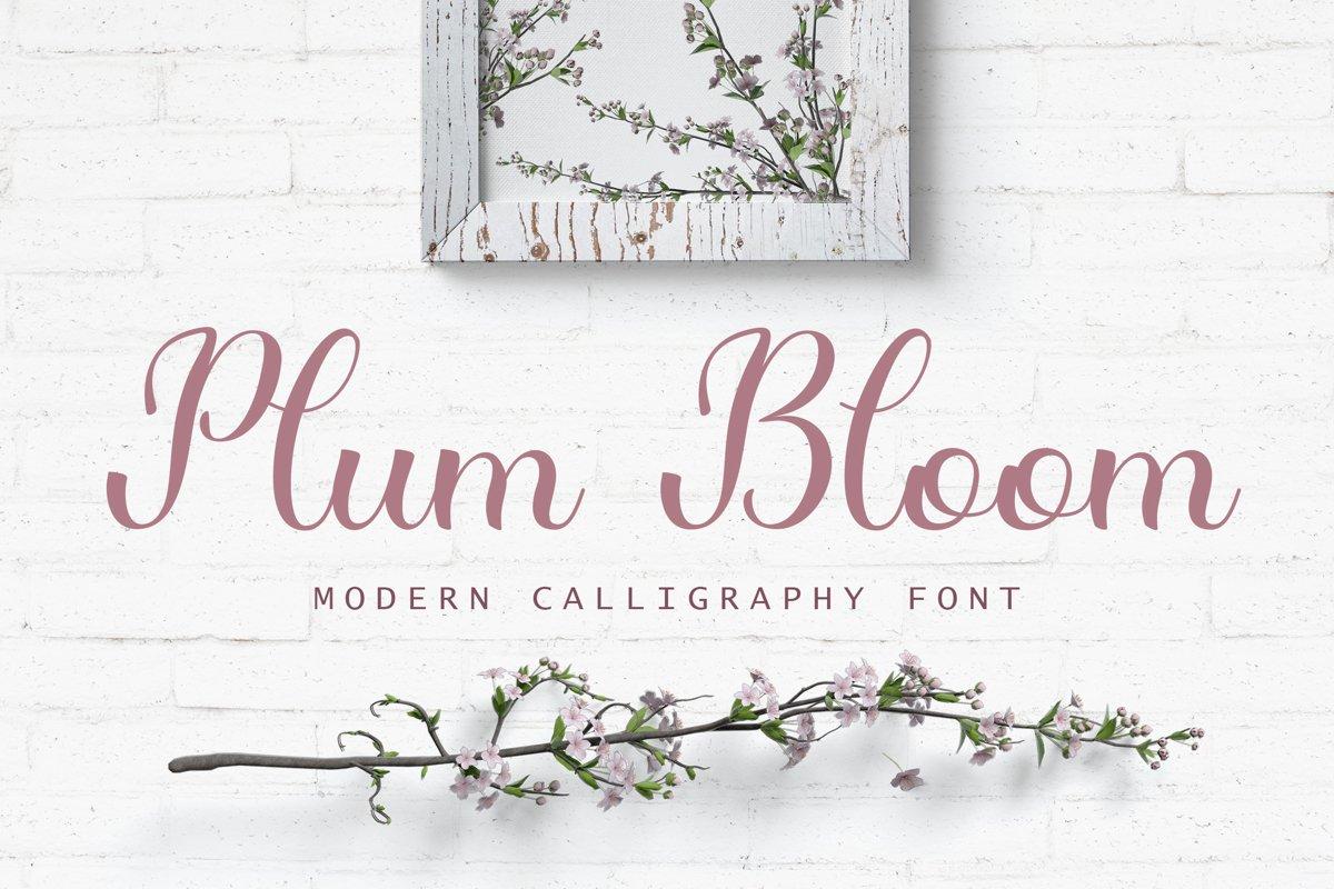 Plum Bloom - handwritten calligraphy font example image 1