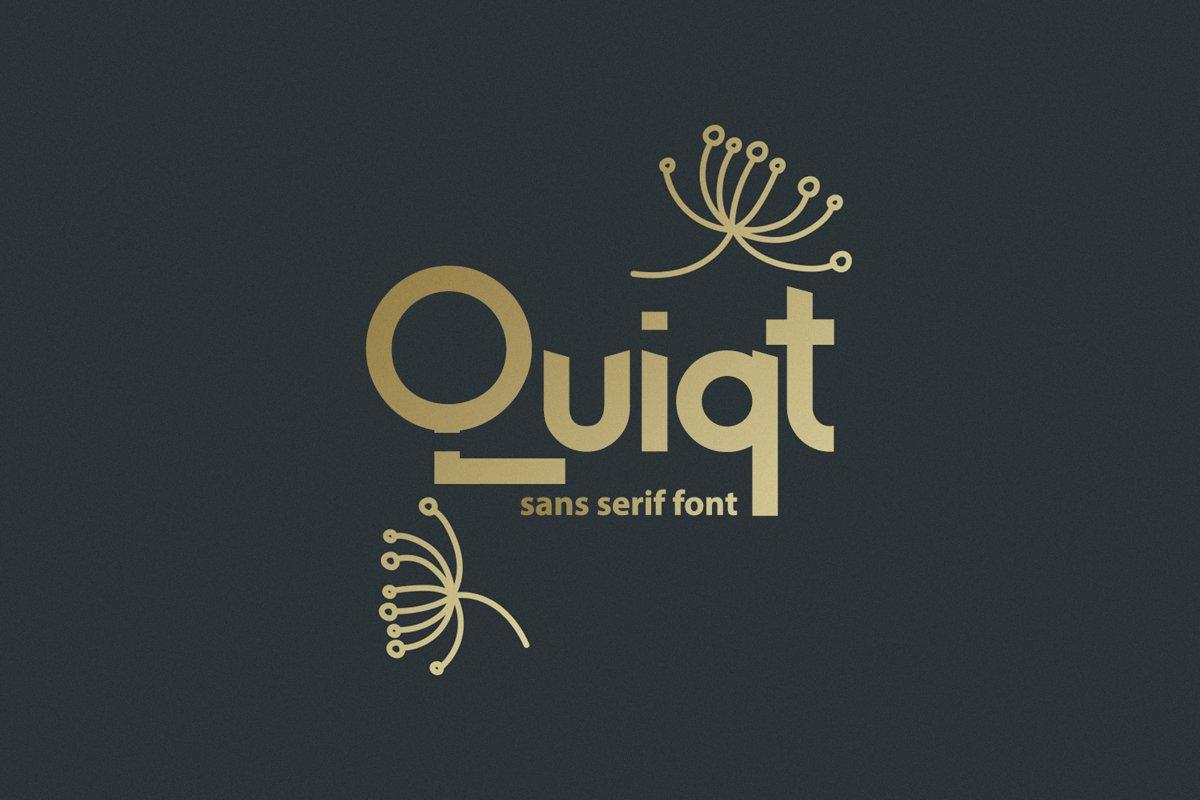 Quiqt example image 1