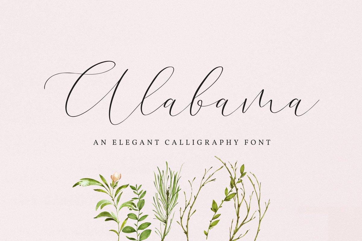 Alabama example image 1