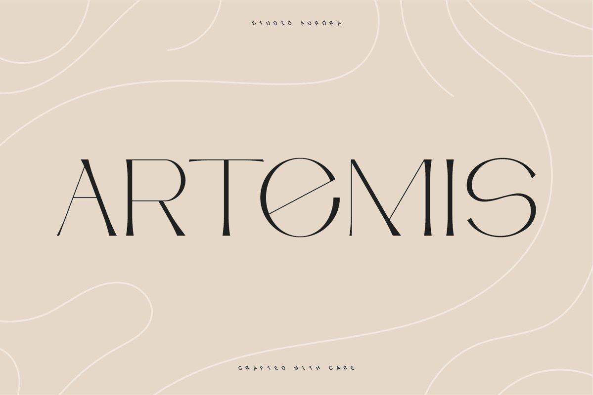 Artemis Semi serif typeface example image 1