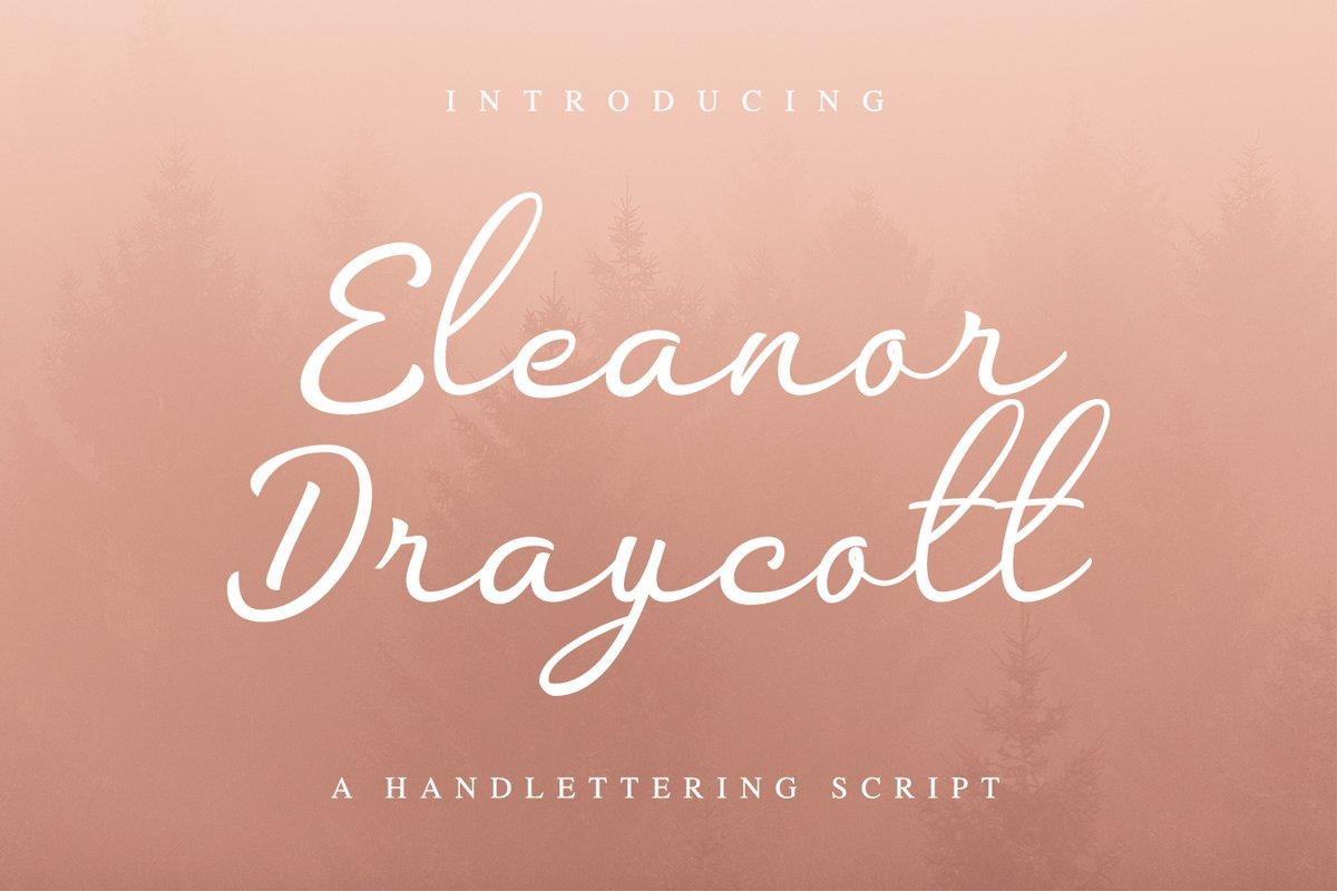 Eleanor Draycott example image 1