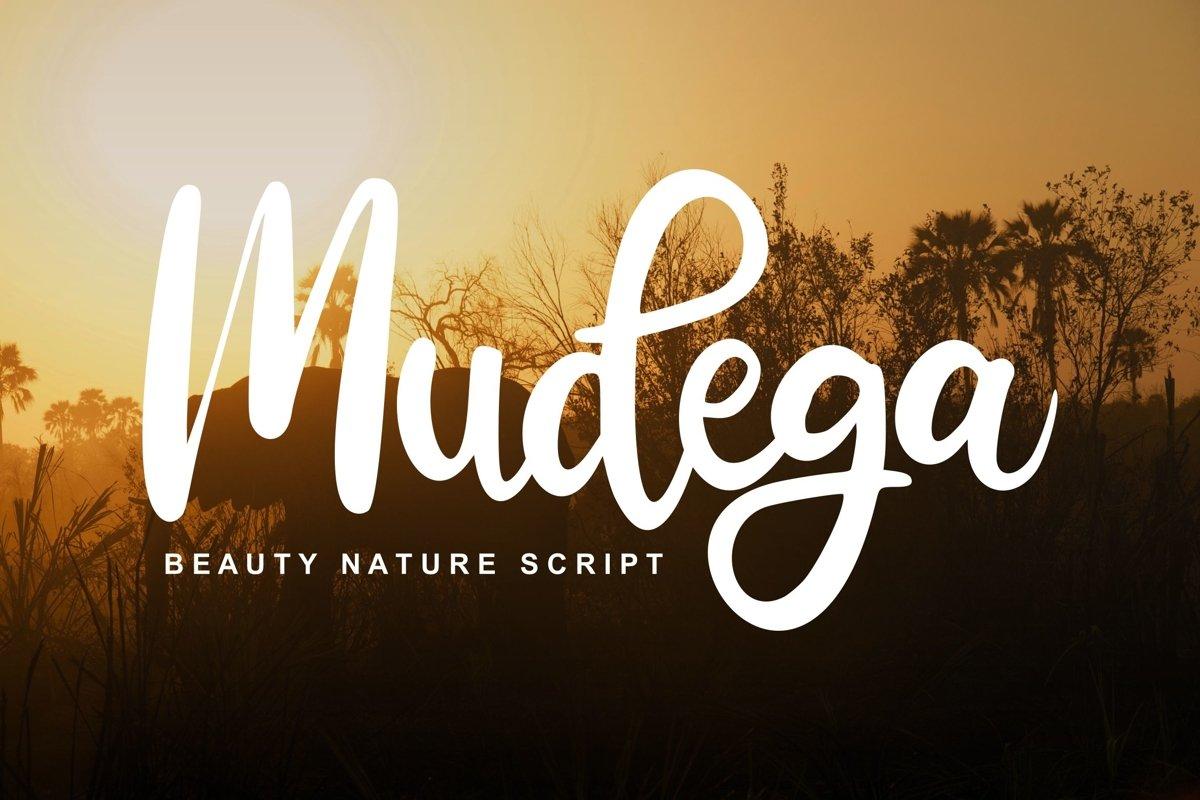 Mudega | Beauty Nature Script Font example image 1