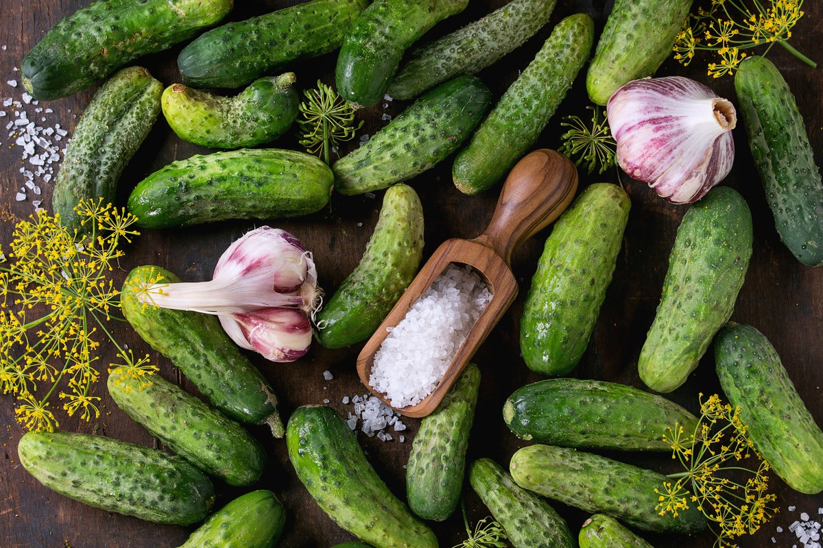 Cucumbers for pickling example image 1