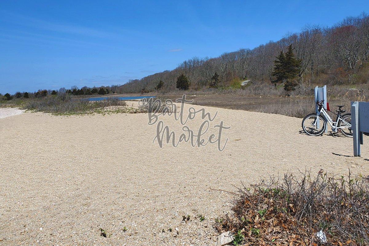 Stock Photo - Beach Bike Path example image 1