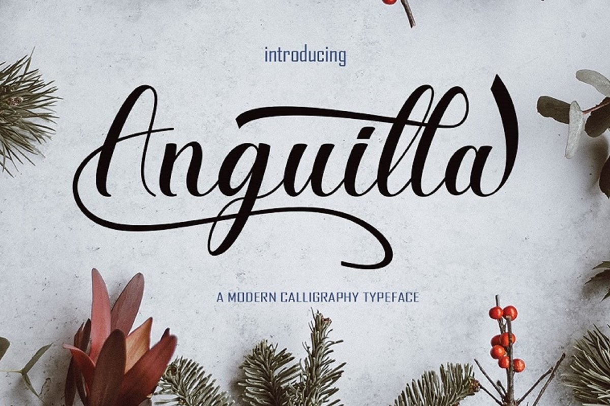 Anguilla example image 1