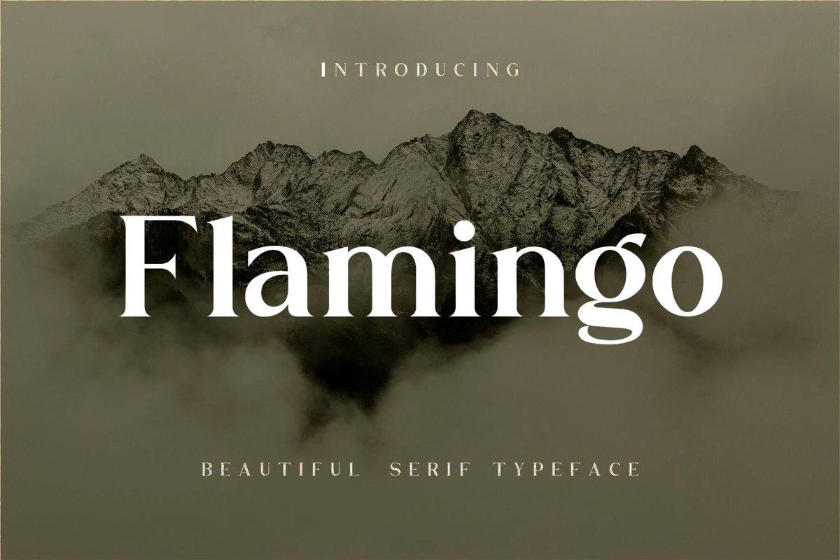 Flamingo example image 1