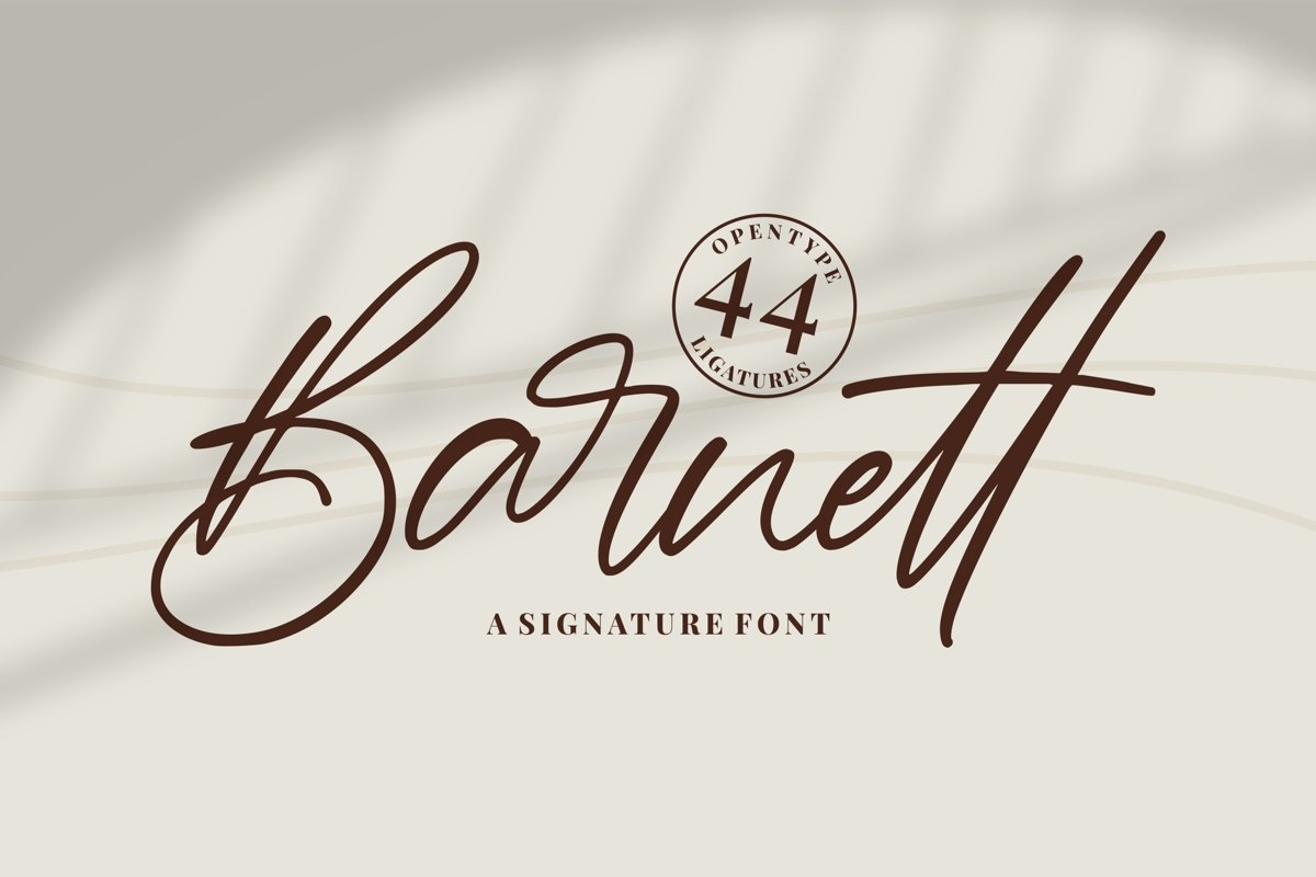 Barnett - Signature Font example image 1