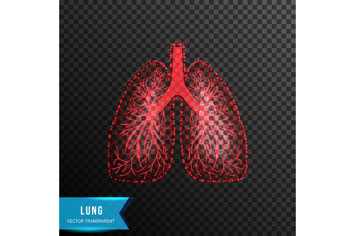 lung from connecting dot and line. light effect. vector illu example image 1