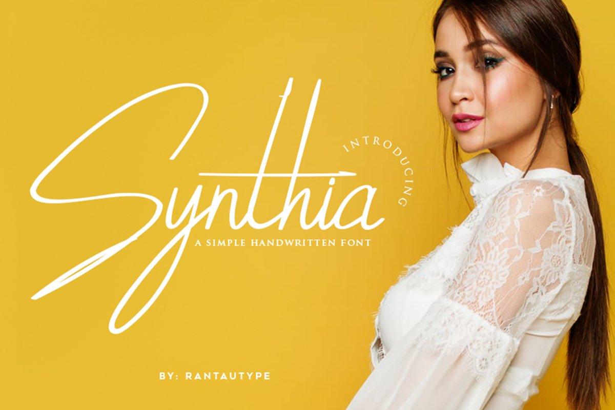 Synthia example image 1