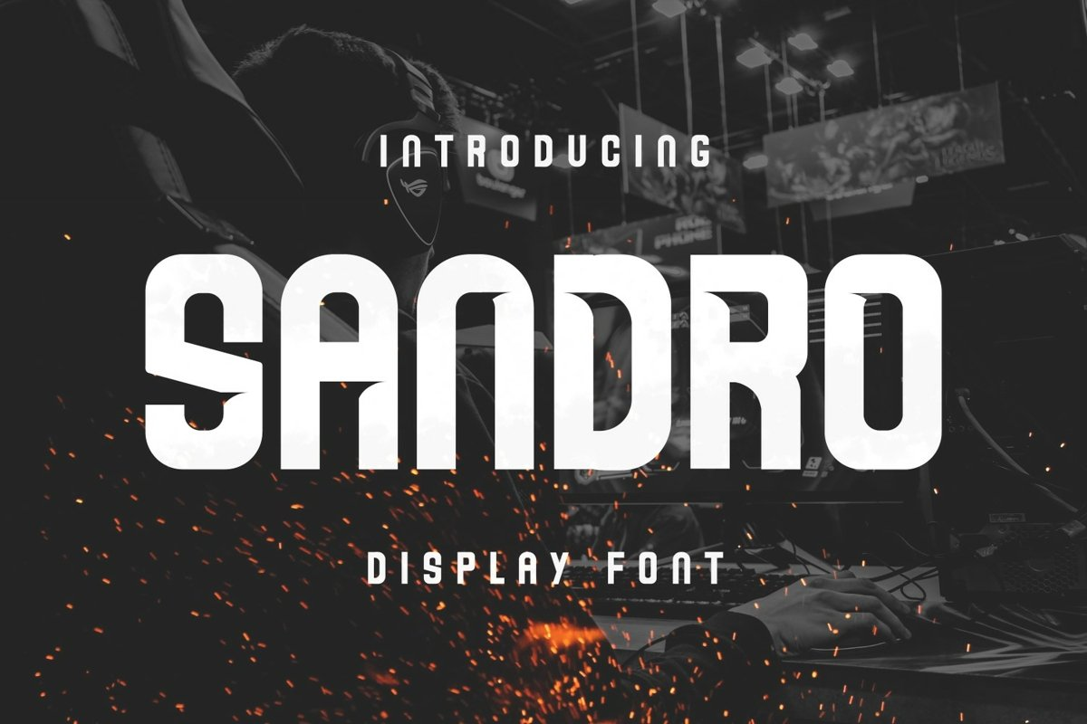Sandro Font example image 1