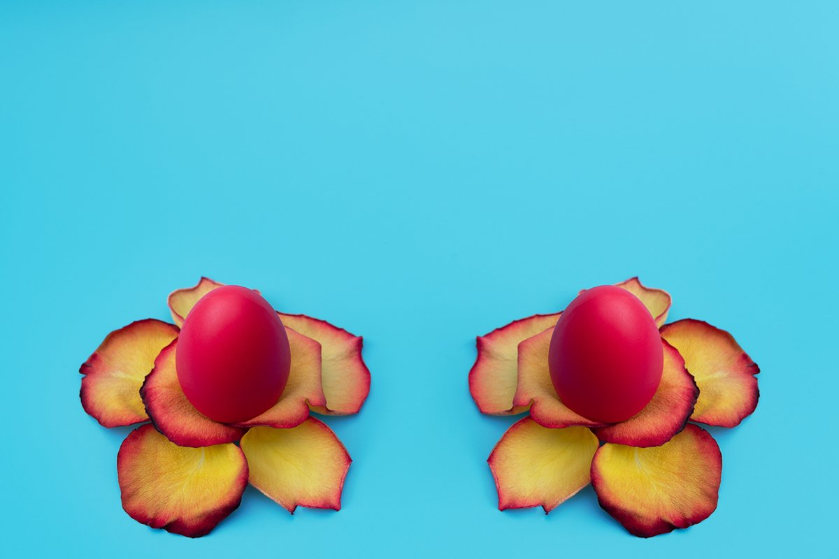 Red Easter eggs stand in yellow flowers made of rose petals example image 1
