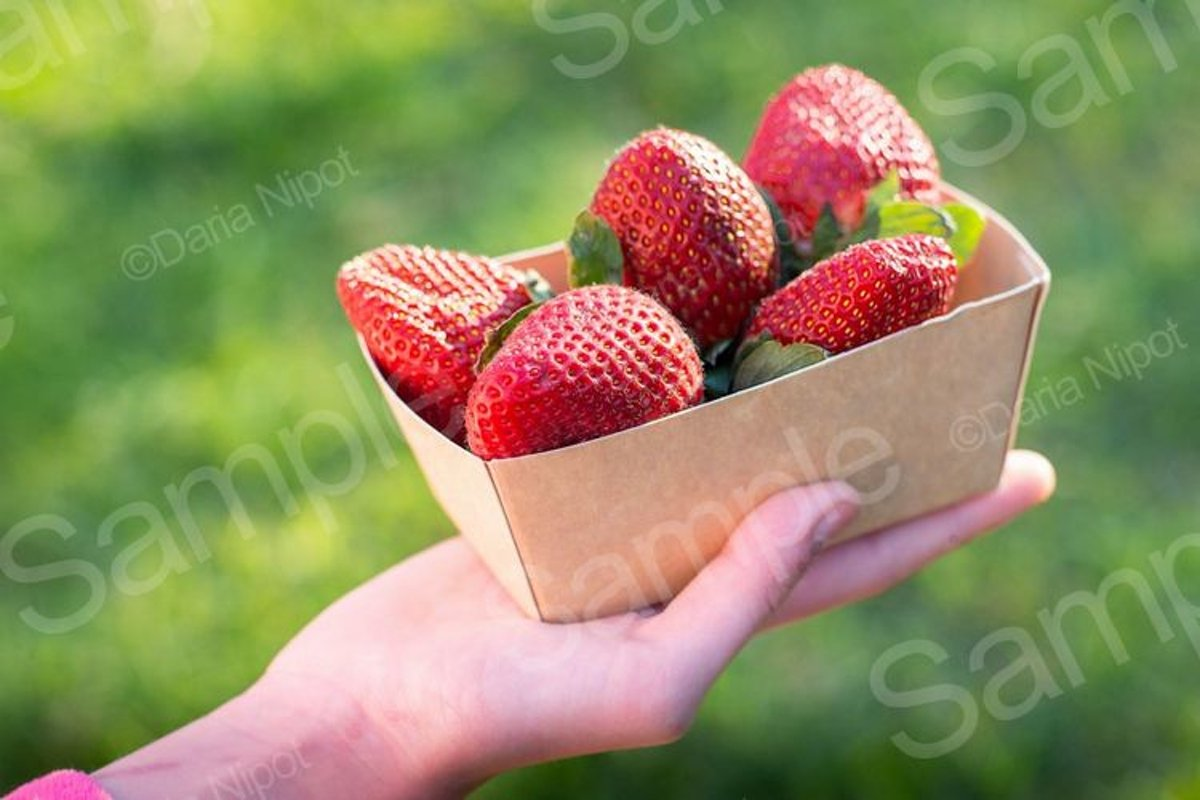Strawberries in recyclable paper box example image 1