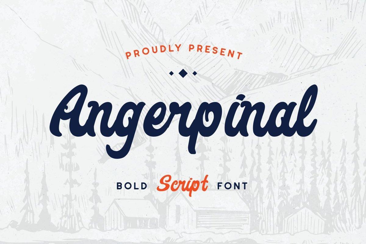 Angerpinal - Bold Script Font example image 1