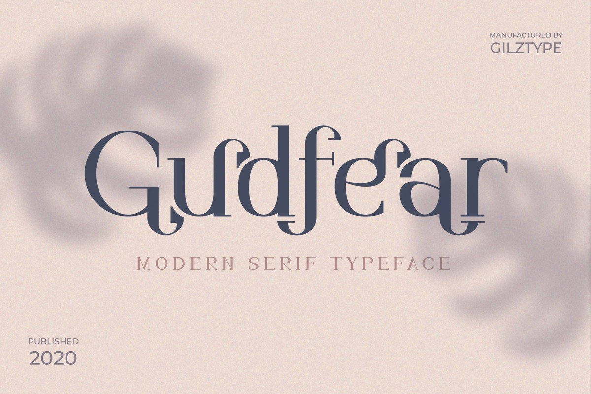 Gudfear - Modern Serif Font example image 1