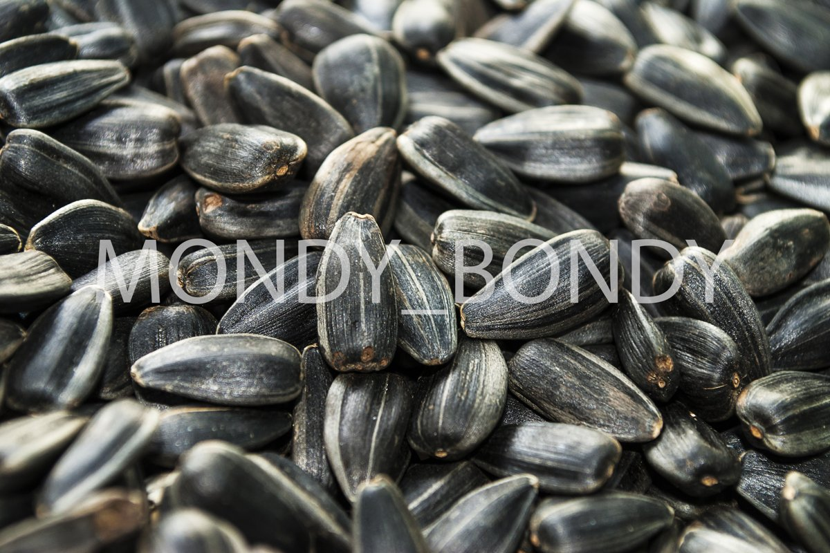 Sunflower seeds close up. Texture example image 1