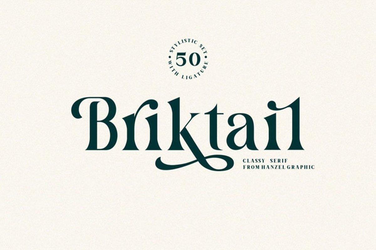 Briktail//Modern Serif Font example image 1