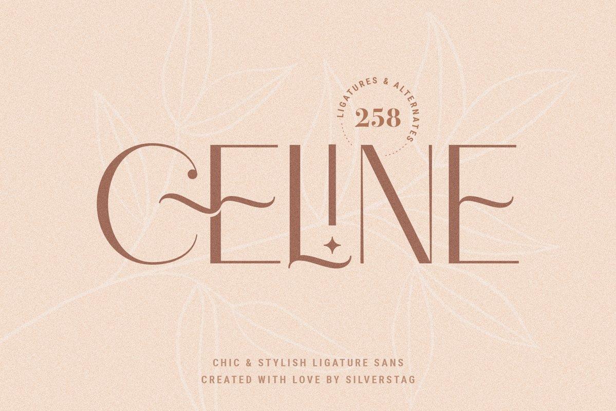 Celine - Chic Ligature Sans Font & Extras example image 1