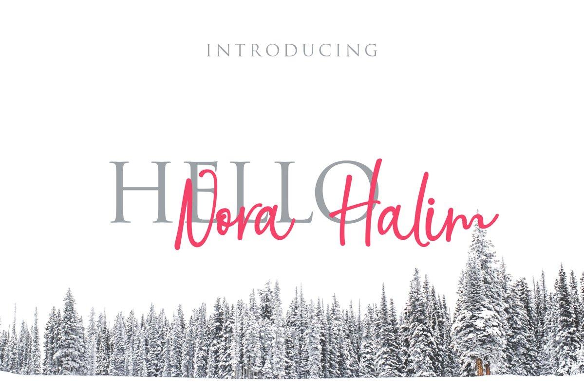 Nora Halim example image 1