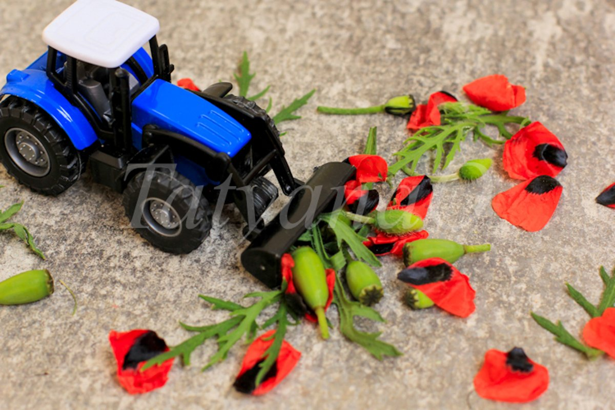 Toy tractor, excavator removing red poppies, corn poppy. example image 1