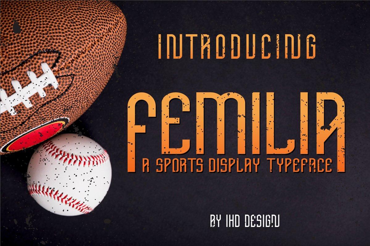 Femilia - Modern Serif Sports Font Typeface example image 1