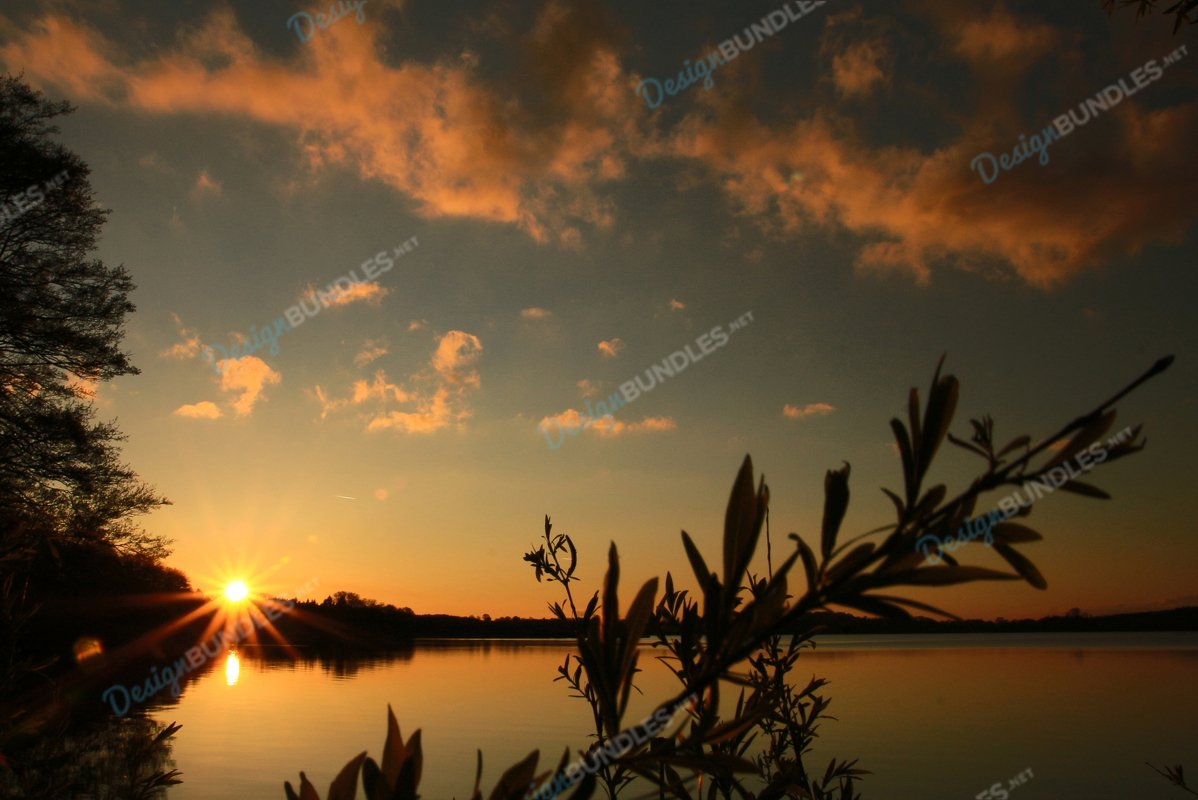Sunset Around The Swamp example image 1