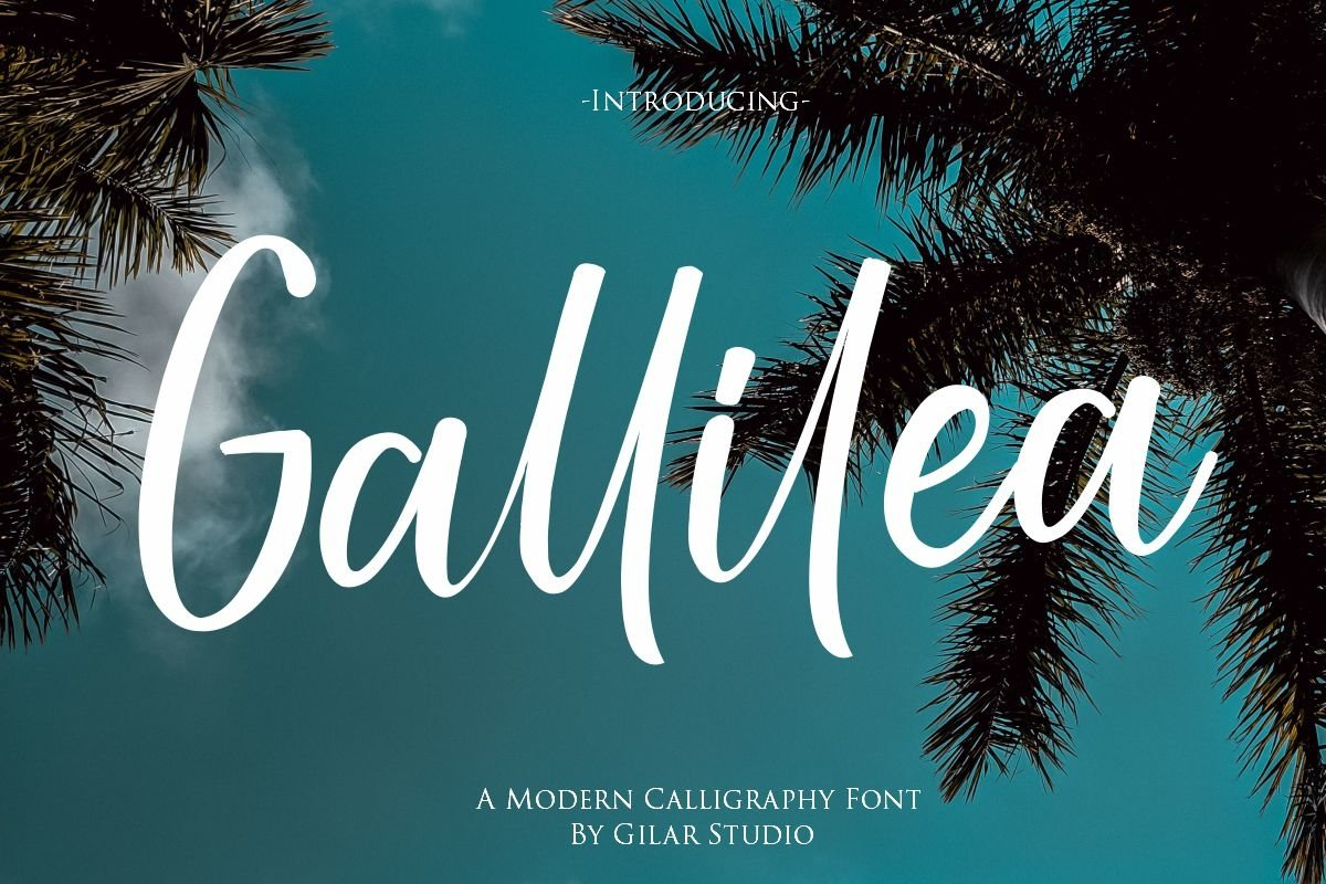 Gallillea | A Modern Calligraphy Font example image 1