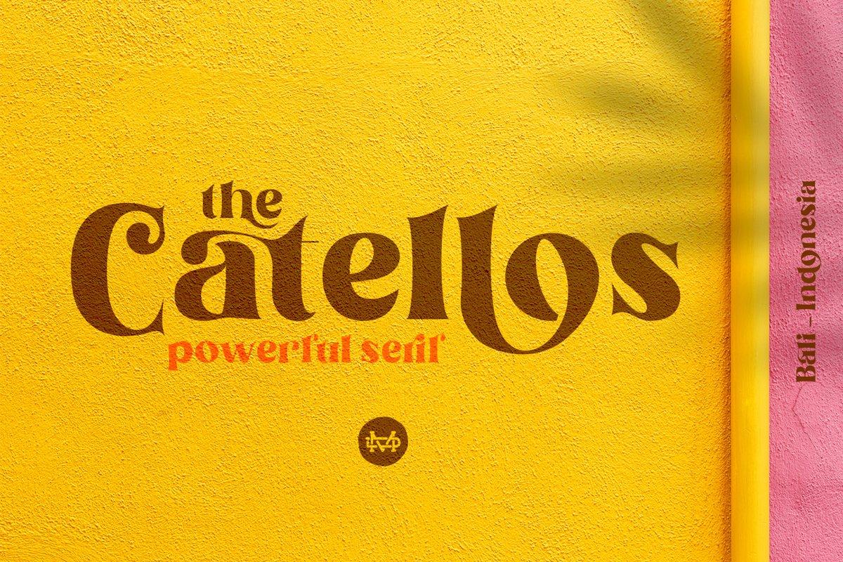 Catellos example image 1