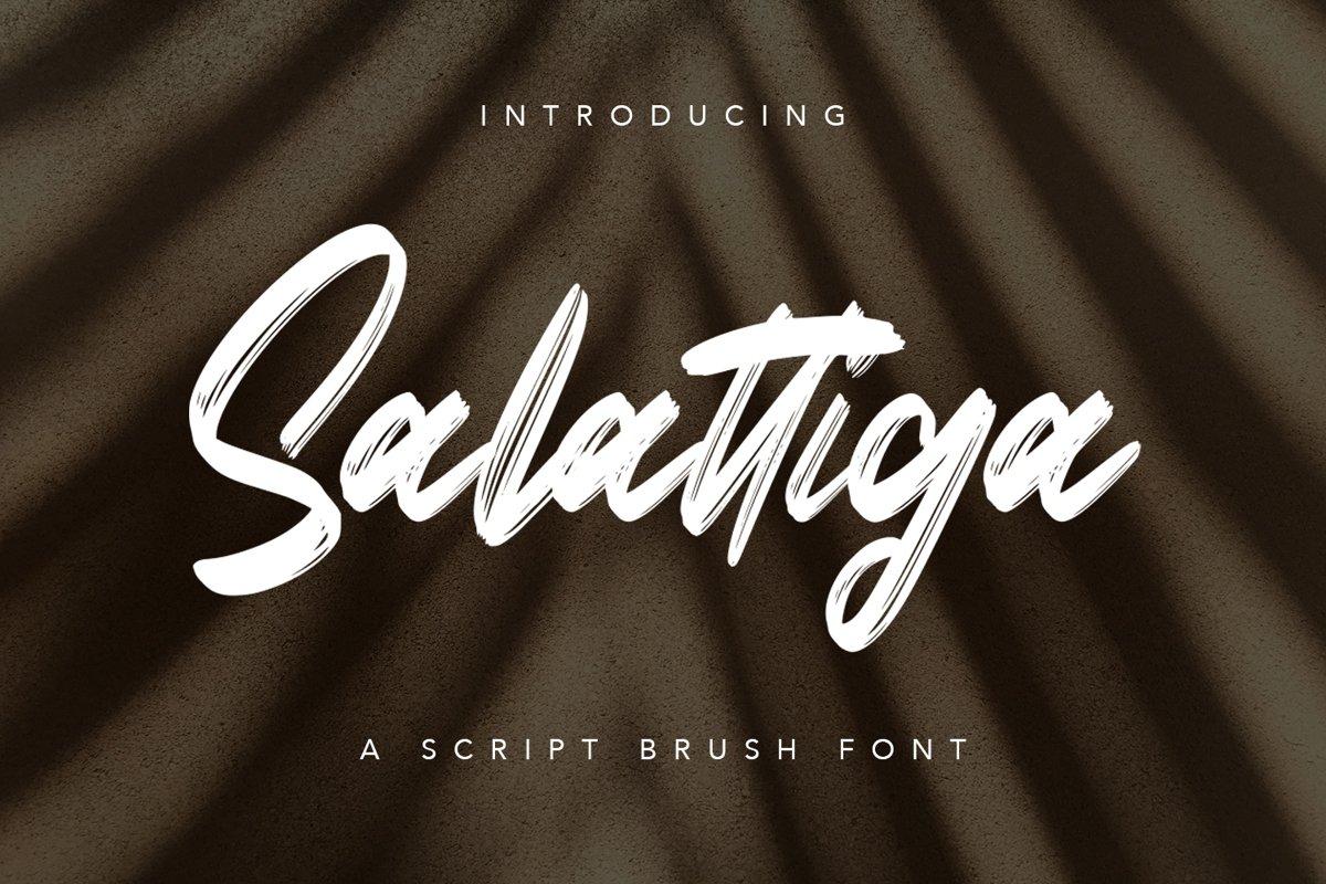 Salattiga - Script Brush Font example image 1
